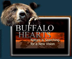 Buffalo Hearts Movie logo